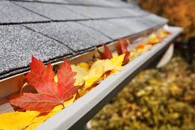 eavestrough-with-leaves